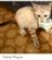 Xanathar_Ironslag's avatar